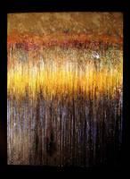 'Rainforest' by blakewood