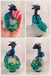 Peacock Dragon