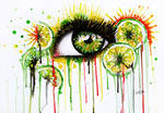 Eye of the Lime