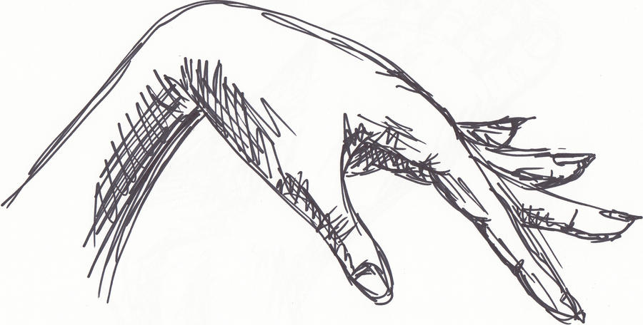 D Line Drawing Hand : Gesture hand drawing by vamp morningstar on deviantart