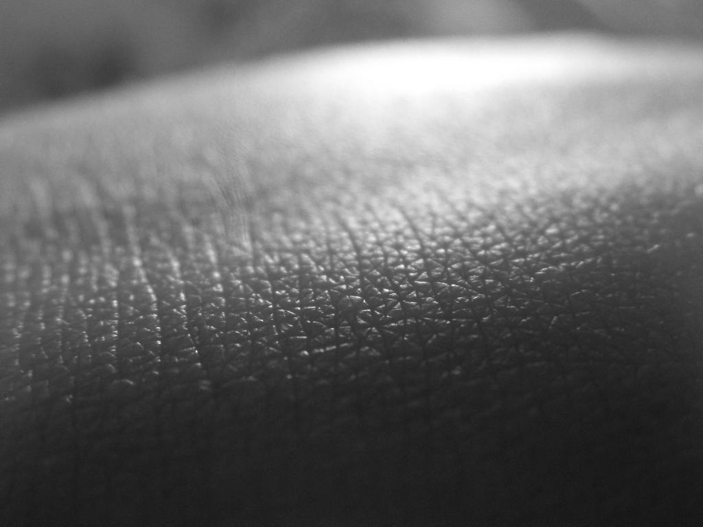 Skin by skarlett-rosetta