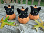 Pumpkin Kitty Amigurumi
