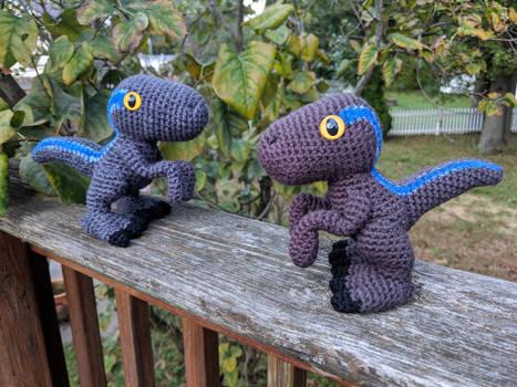 Baby Velociraptors
