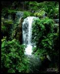Opryland Hotel - Opry Falls