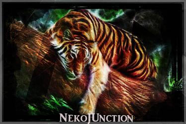 Tiger-Signature