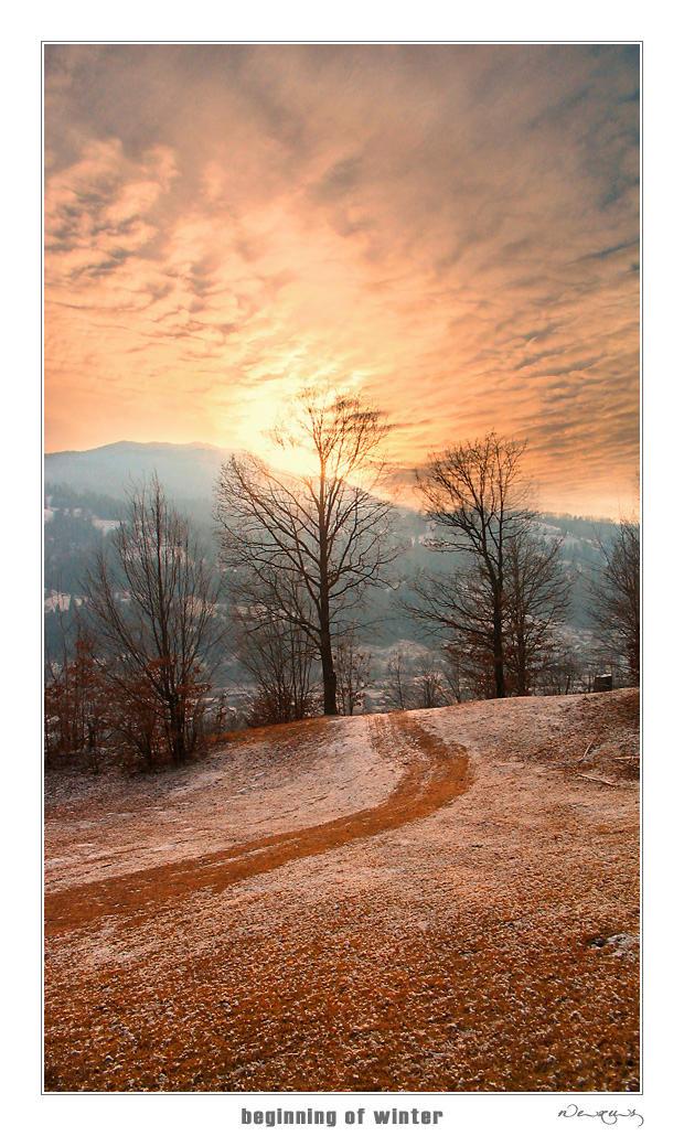 Beginning Of Winter by n--e--x--u--s
