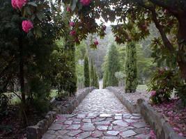 Paved path by Bridie-Stock
