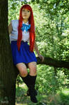 Erza Scarlet - Fairy Tail p.4 by Catulus-Cosplay