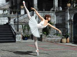 Yard ballet by Lynxander