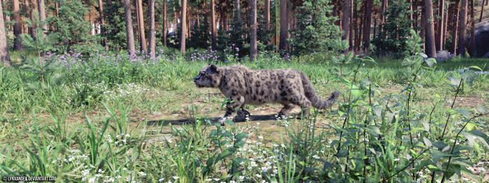 Fennoscandian Snowleopard