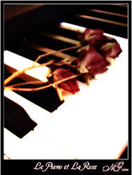 Le Piano et La Rose by lilith77