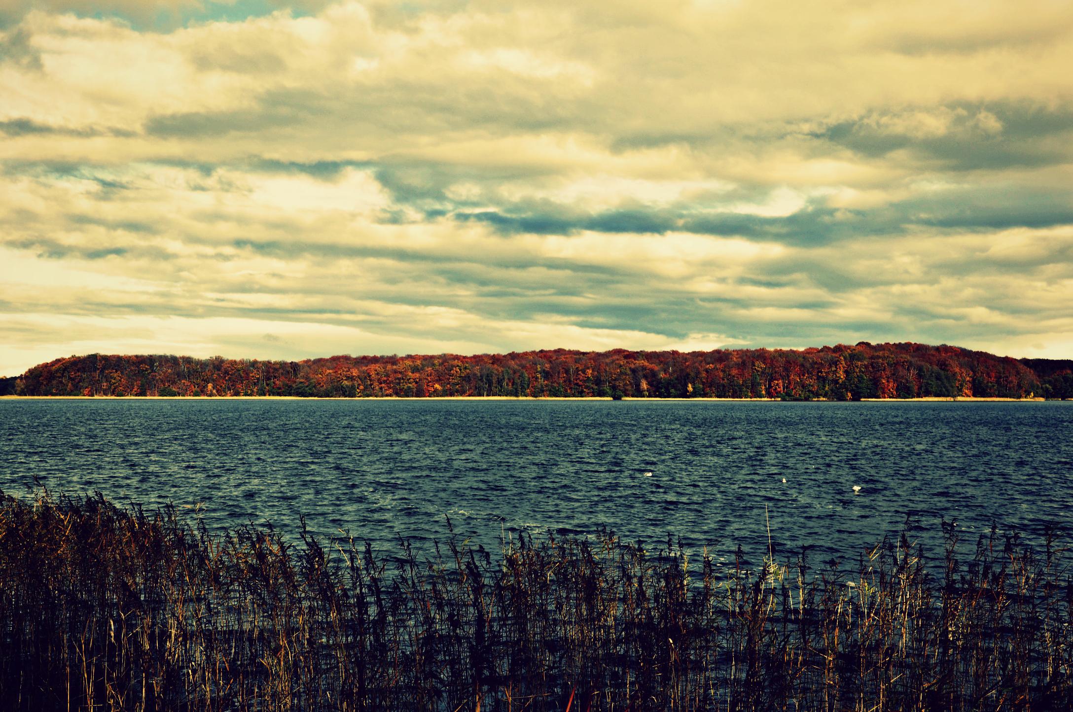 Autumn 3 by M1C3k