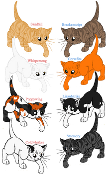 WC Breeding Set no. 1 - Adopt the Adults