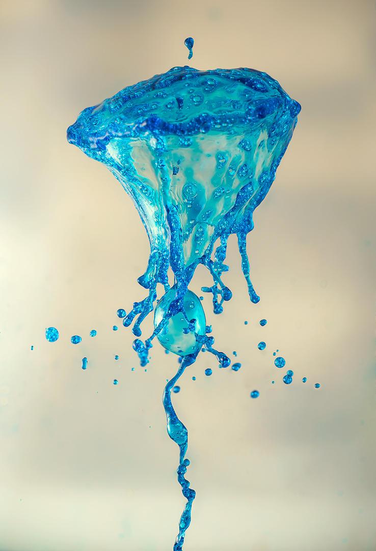 little medusa by 1poz