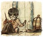 Sad Harry and Hedwig