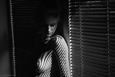 7 by darkelfphoto