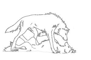Two Wolves LineArt by Whisper66