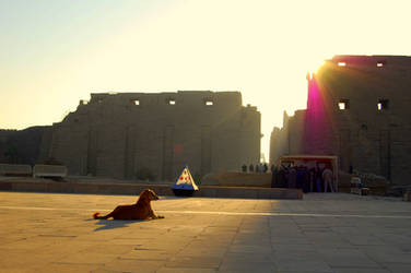 Karnak Temple 9 Sphinxy Dog by mynando