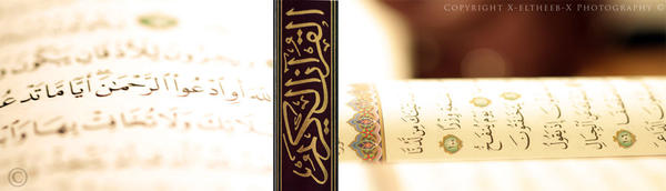 .:. Merciful .:. by IslamicShots