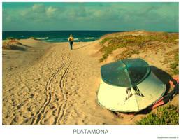 PLATAMONA by gianf