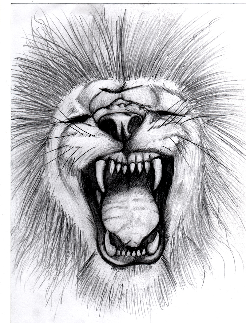 a Lion Roaring by soul-courageous on DeviantArt