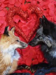 HAPPY VALENTINES DAY! by maryssoftmounts