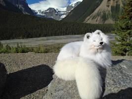 ARCTIC FOX SOFT MOUNT*****SOLD*********** by maryssoftmounts