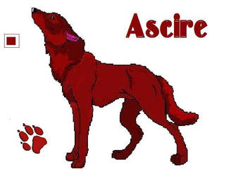 Furcadia info by ascire