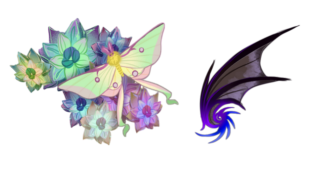 -Commission- Winged creatures.