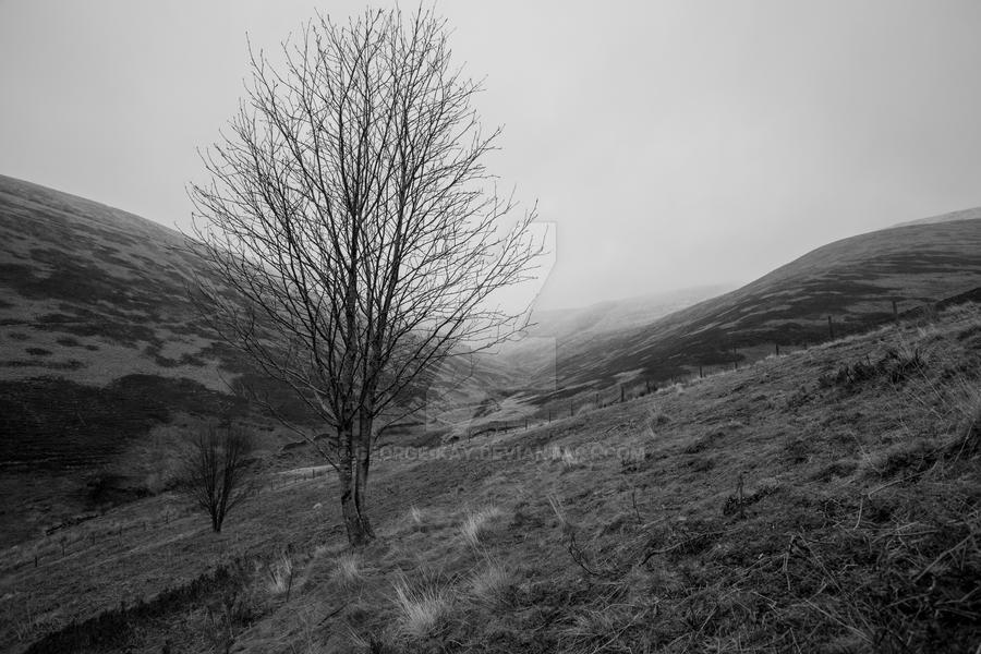 Bleak Peak by george-kay