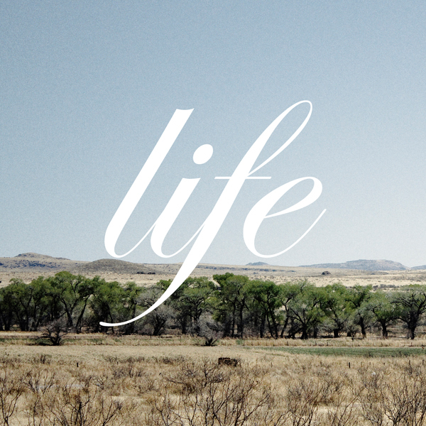 Life by celuloide