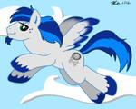 MLPFIM -- Iberian Pony OC