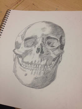 First Attempt At Drawing A Skull