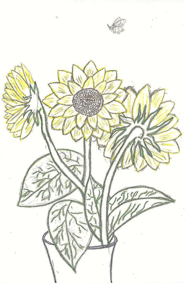 Sunflowers by KeidaHattori