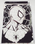 Spider-Man by MilarS