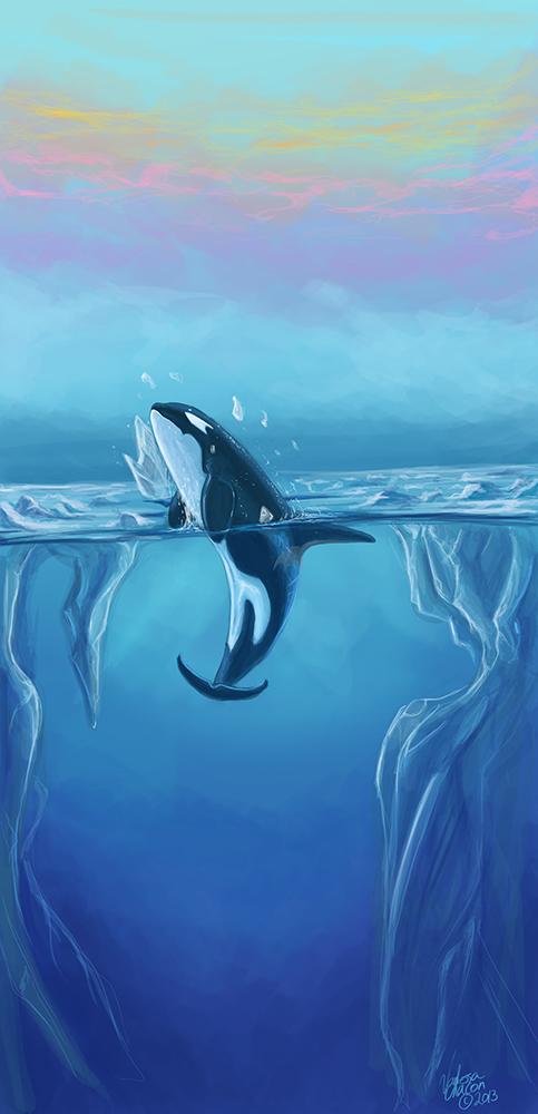 Dragonaide Orca by Atolm