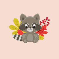 Raccoon by tashamille