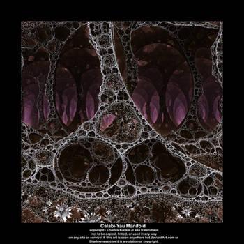 Calabi-Yau Manifold by fraterchaos