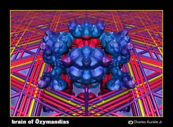 brain of Ozymandias by fraterchaos