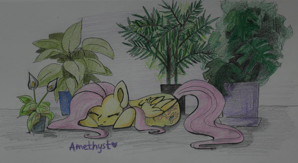 Home Fluttershy by Amy-Gamy