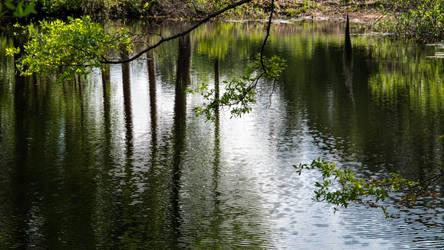 Dark Water I
