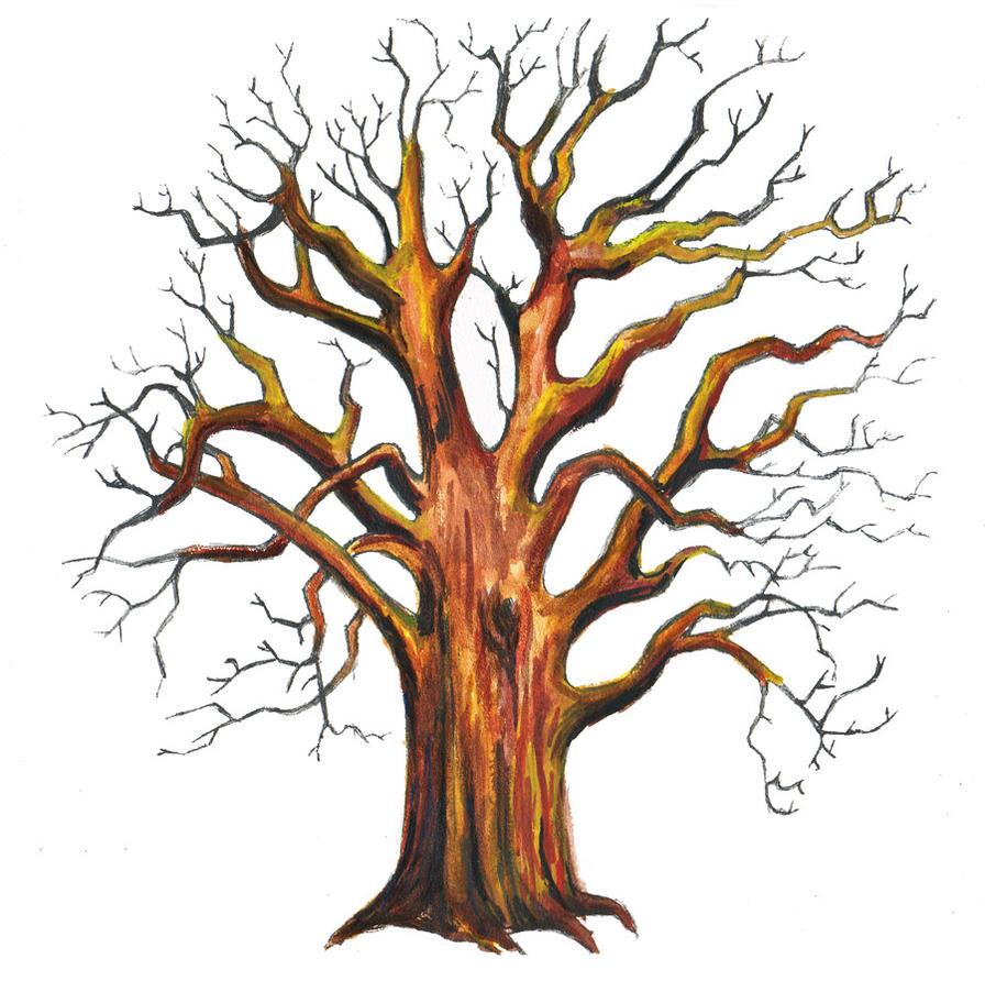 http://th04.deviantart.net/fs71/PRE/f/2011/356/a/3/old_oak_tree_by_g_smilodon-d4jv1ts.jpg