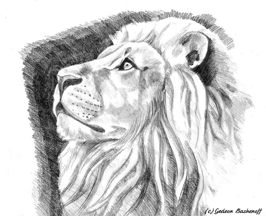 Рисует карандаш лев