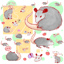 A ton of Possums