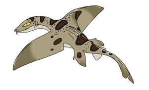 Gliding leopard shark concept
