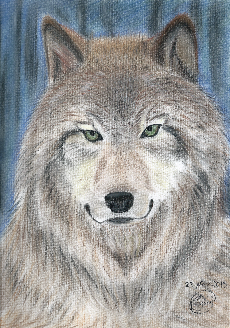 Wolf by Alywe