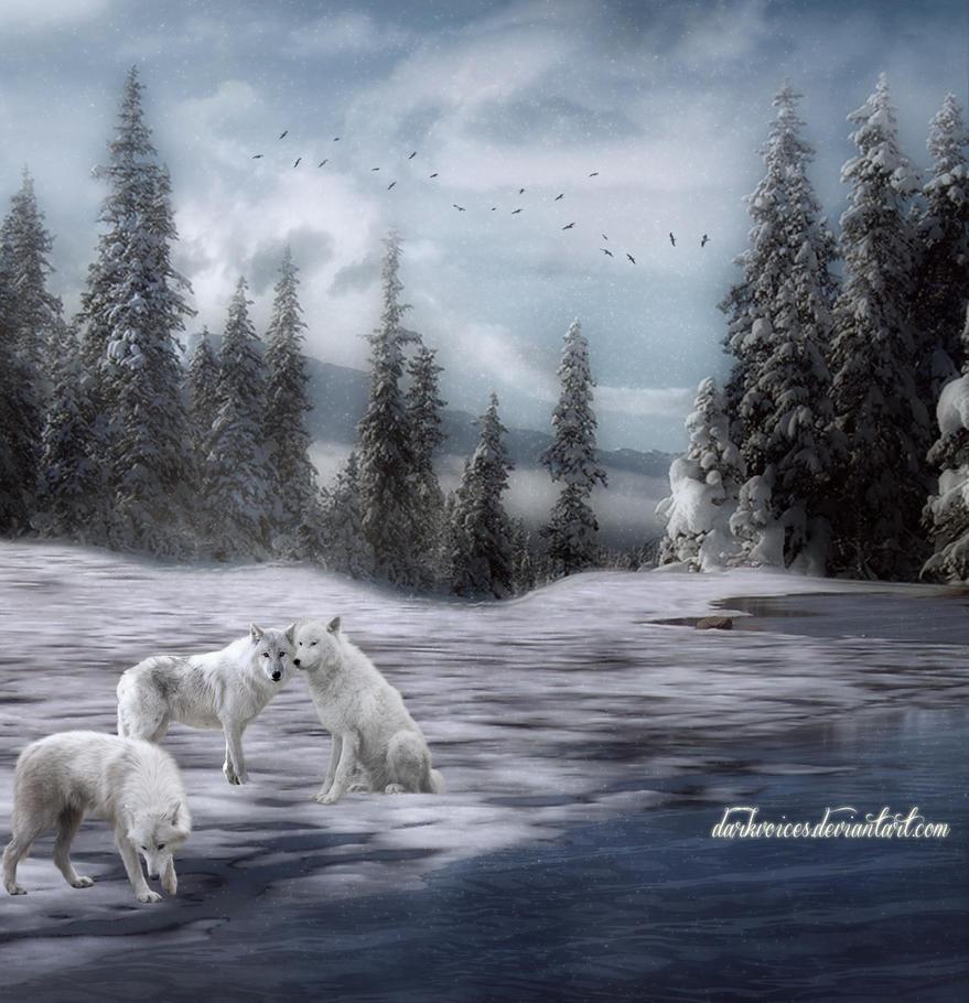 Winter pack by Dark-Voices