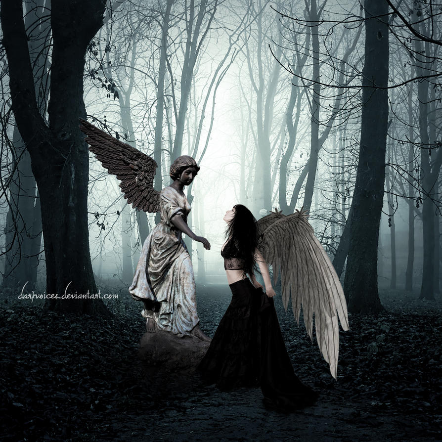Angel by Dark-Voices