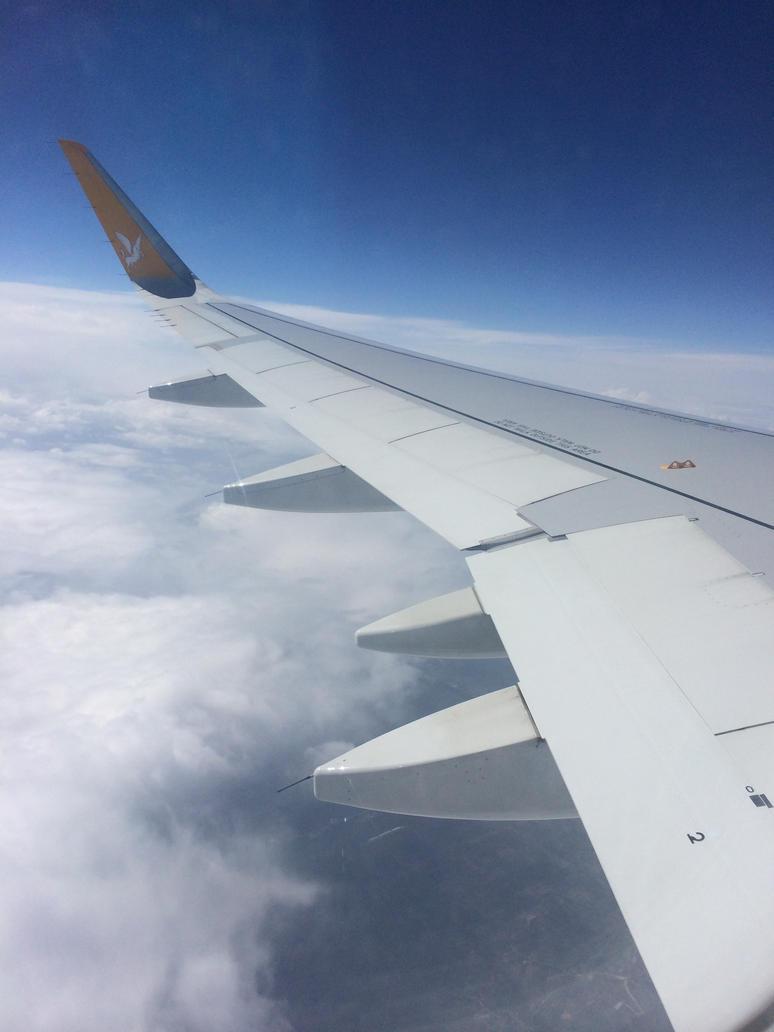 FlyAway by Dark-Voices