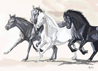 horses by rachelleejj